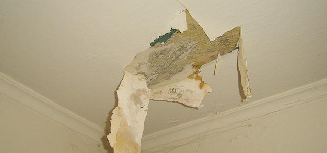 Roof Damage Adjuster Get Help Today Stellar Public