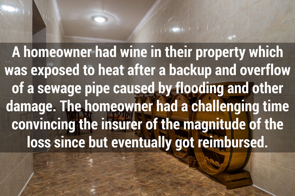 funny and horrific insurance claims stories