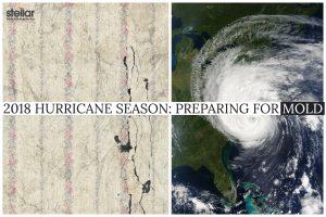 2018 Hurricane Season: Mold | Stellar Adjusting
